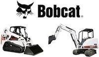 Bobcat попался в сеть